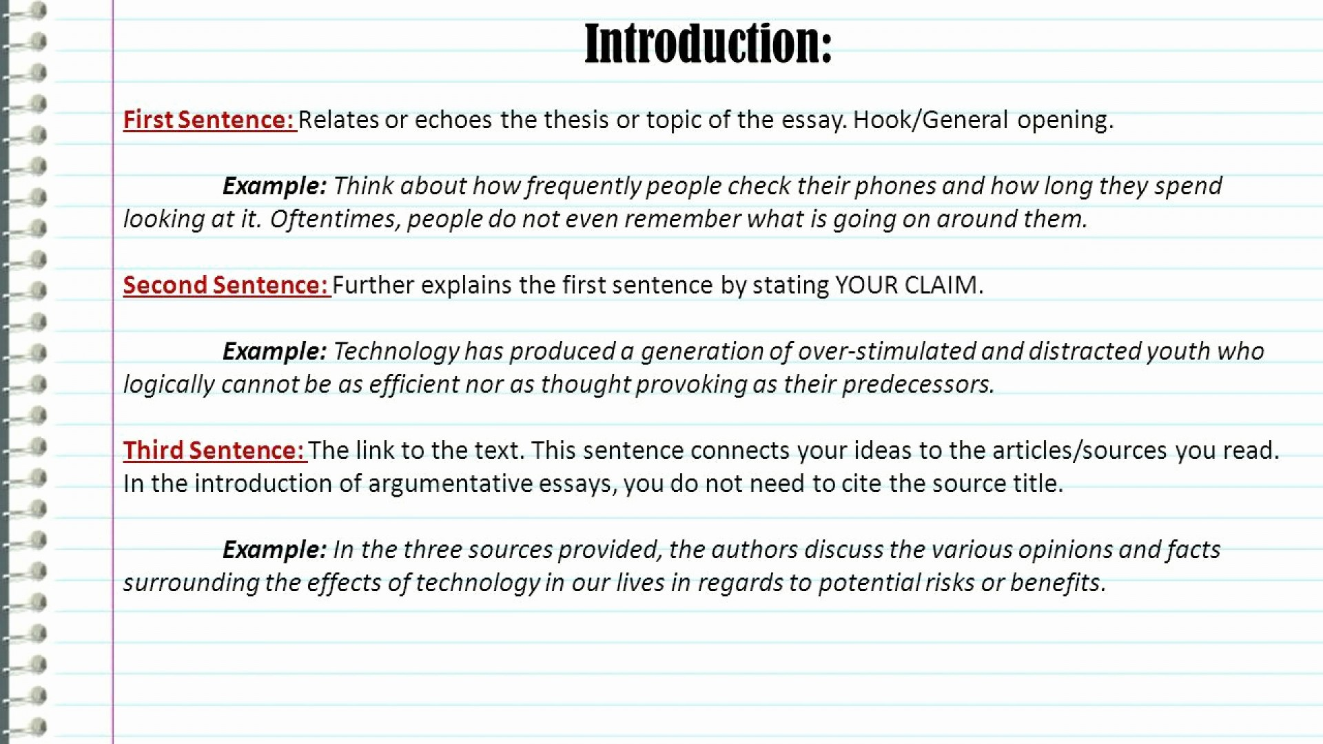 013 essay example hook sentences for essays