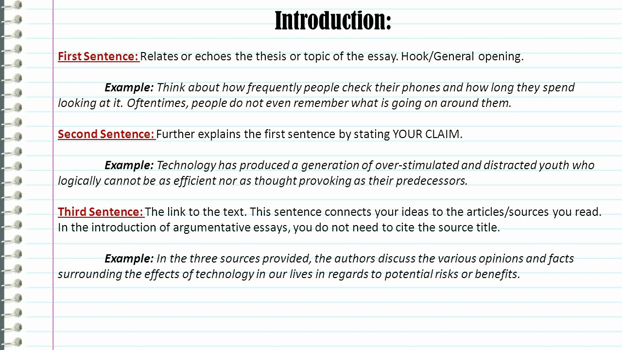 015 Persuasive Essays Example Student Essay Examples Hooks For Co Graph Ideas College Higher English Uk About Animals High School Middle Hook Unusual Sentences Of Full