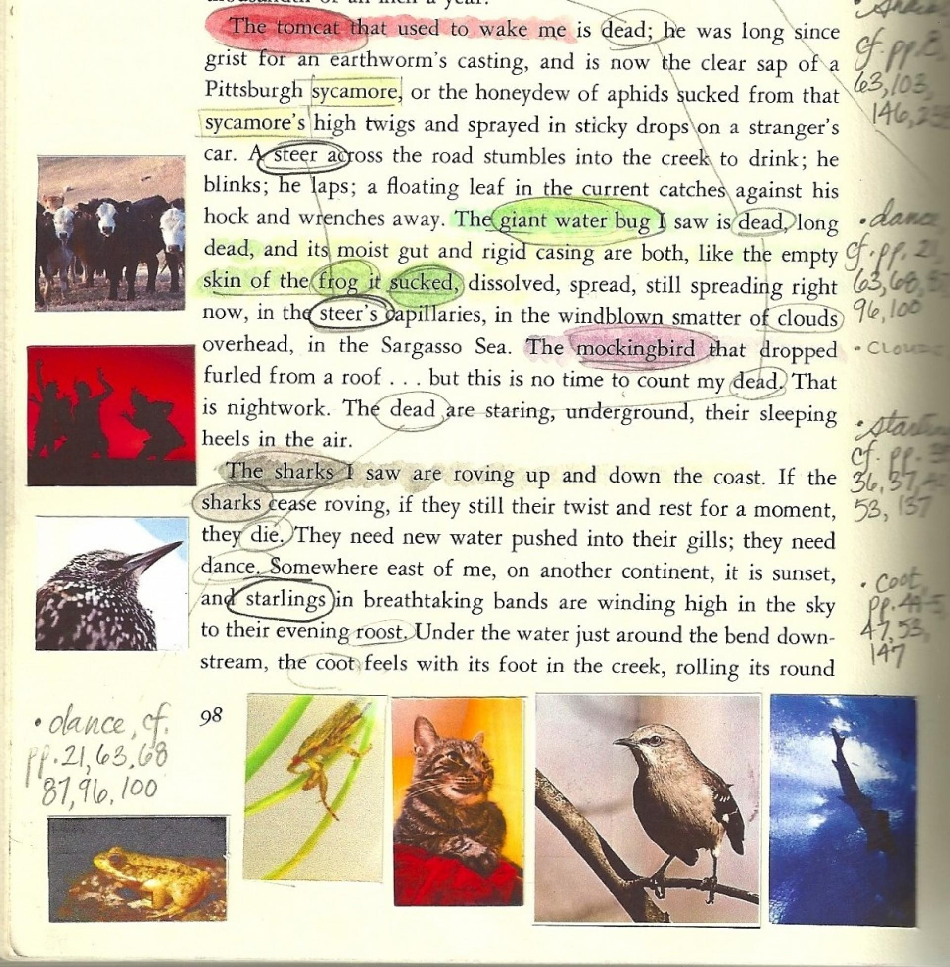 015 Pilgrim Page 1005x1024 Essay Example Annie Dillard Stirring Essays Stunt Pilot Pdf An American Childhood 1920