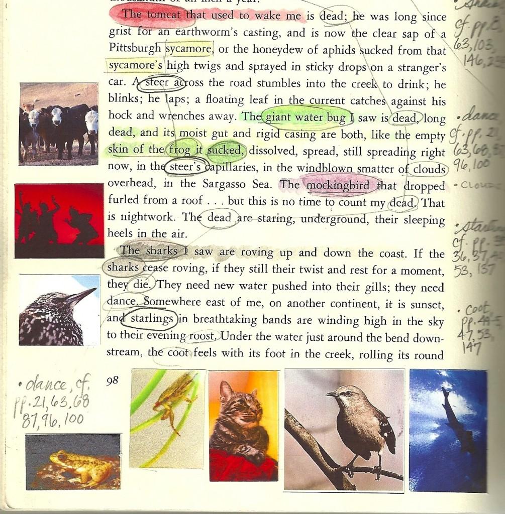 015 Pilgrim Page 1005x1024 Essay Example Annie Dillard Stirring Essays Stunt Pilot Pdf An American Childhood Full