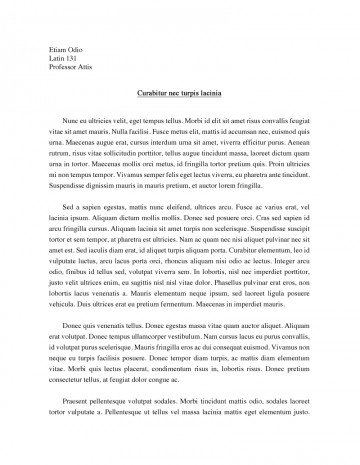 016 Argumentative Essay On Social Networking Sites Example Persuasive Topics Wonderful College Level Speech For Students Unique 360