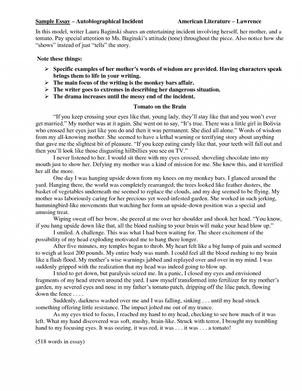 016 Autobiography Essay 85678 Unusual Examples Autobiographical Incident Format Samples Large