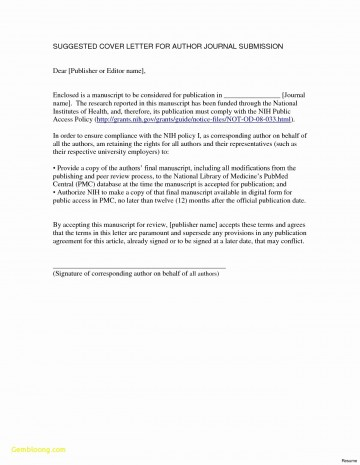 016 College Essay Format Template Inspirational Simple Resume