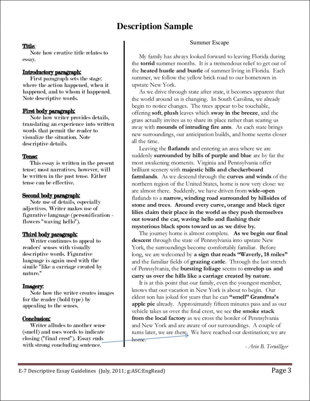 016 Descriptive Essays Process Pdf Examp Argumentative Narrative Exemplification Classification Persuasive Sat Writing Opinion Unbelievable Essay Gujarati Free Download Terrorism Large
