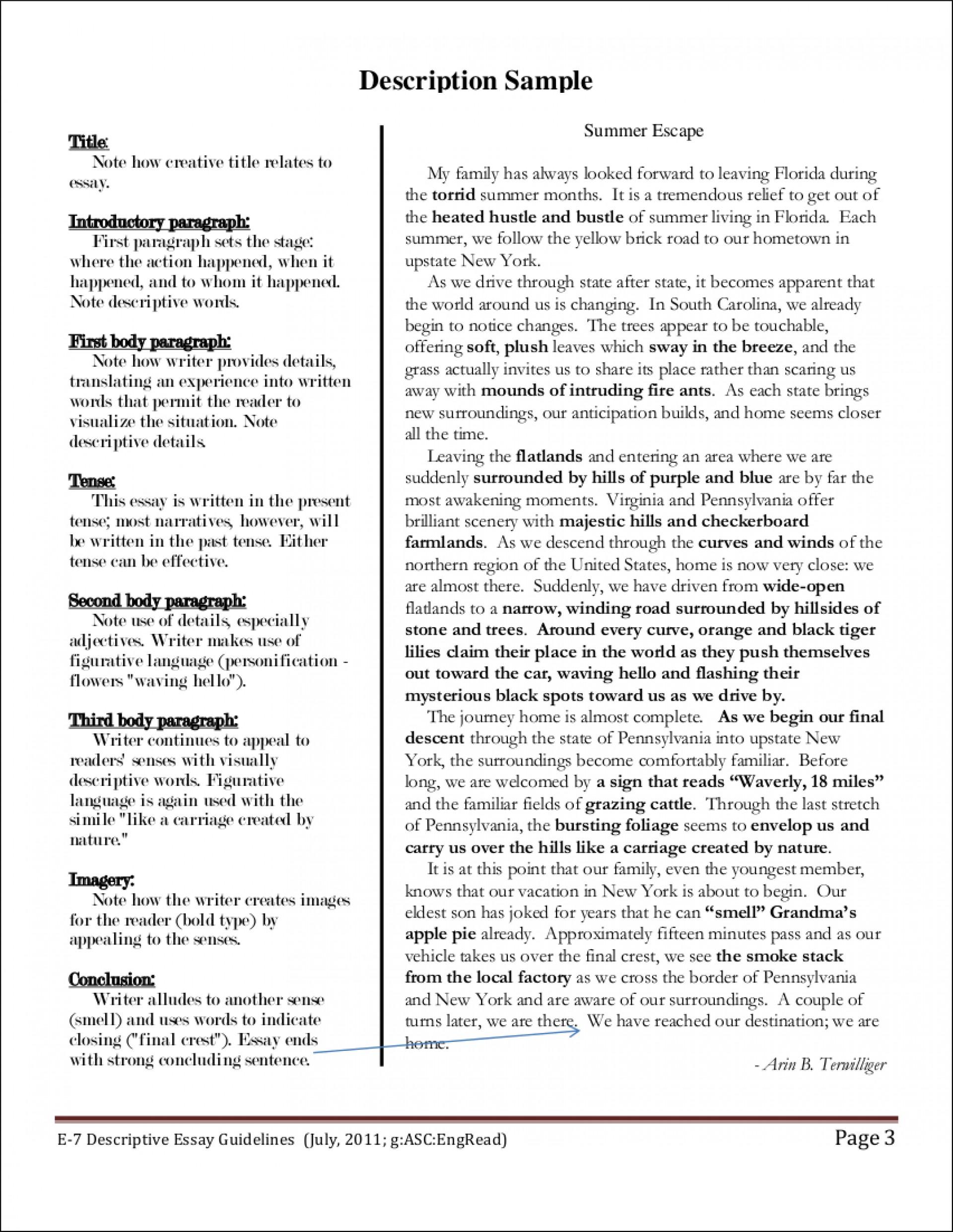 016 Descriptive Essays Process Pdf Examp Argumentative Narrative Exemplification Classification Persuasive Sat Writing Opinion Unbelievable Essay Gujarati Free Download Terrorism 1920