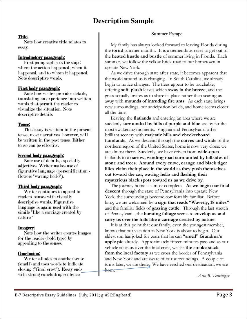 016 Descriptive Essays Process Pdf Examp Argumentative Narrative Exemplification Classification Persuasive Sat Writing Opinion Unbelievable Essay Gujarati Free Download Terrorism Full