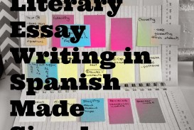016 Essay Example Essays In Spanish Lit Fascinating Tips For Writing Written Phrases