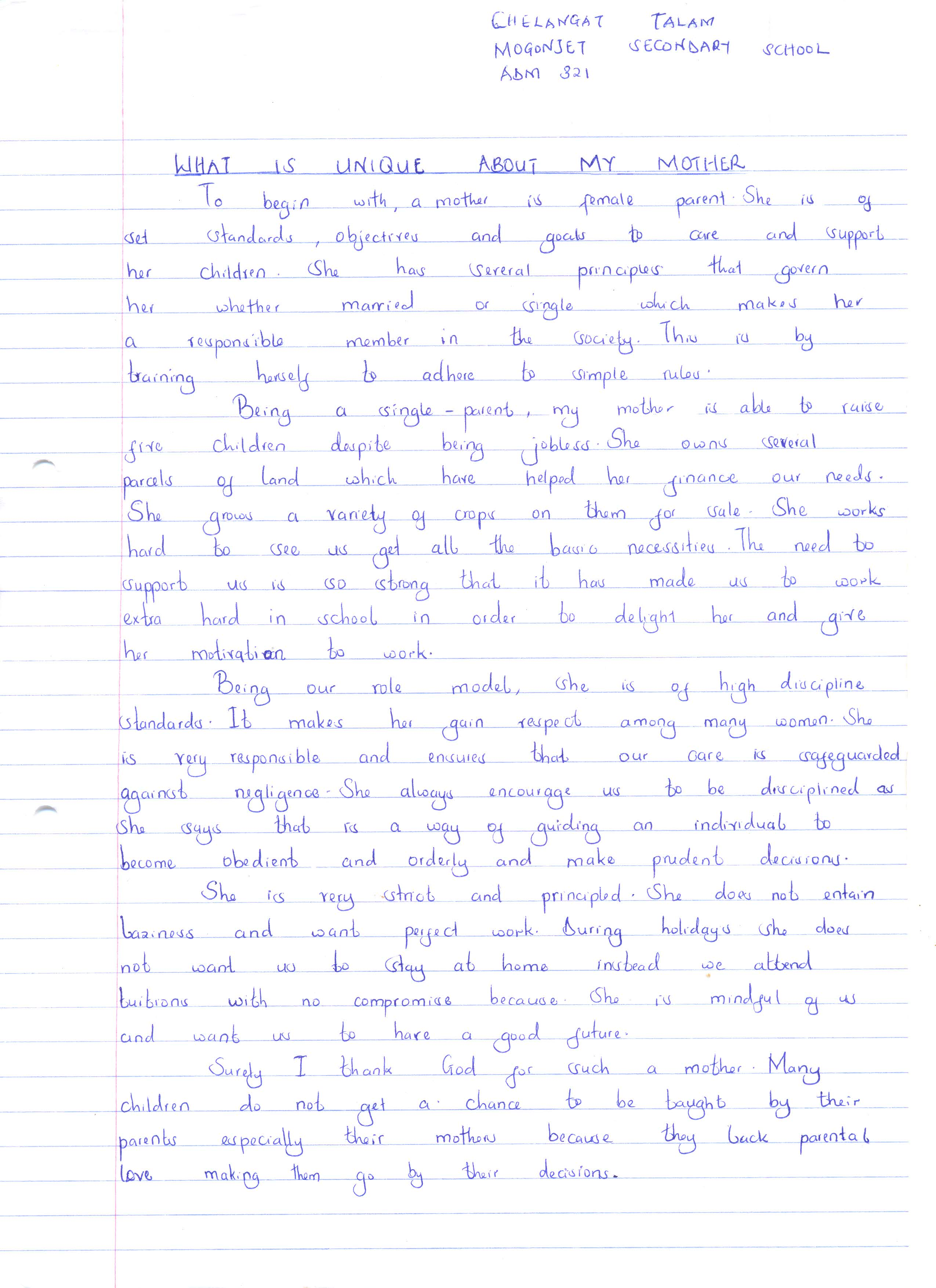 016 Essay Example Inspirational Breathtaking Essays About Life And Struggles For Youth Full