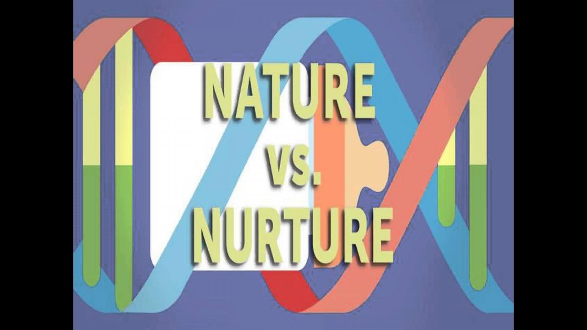 016 Essay Example Nature Vs Nurture Incredible Paper Outline Topics 1920