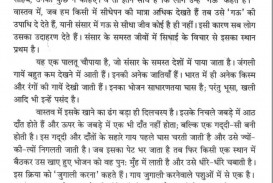 016 Essay On Love For Animals In Hindi 10014 Thumb Fascinating Towards And Birds 320