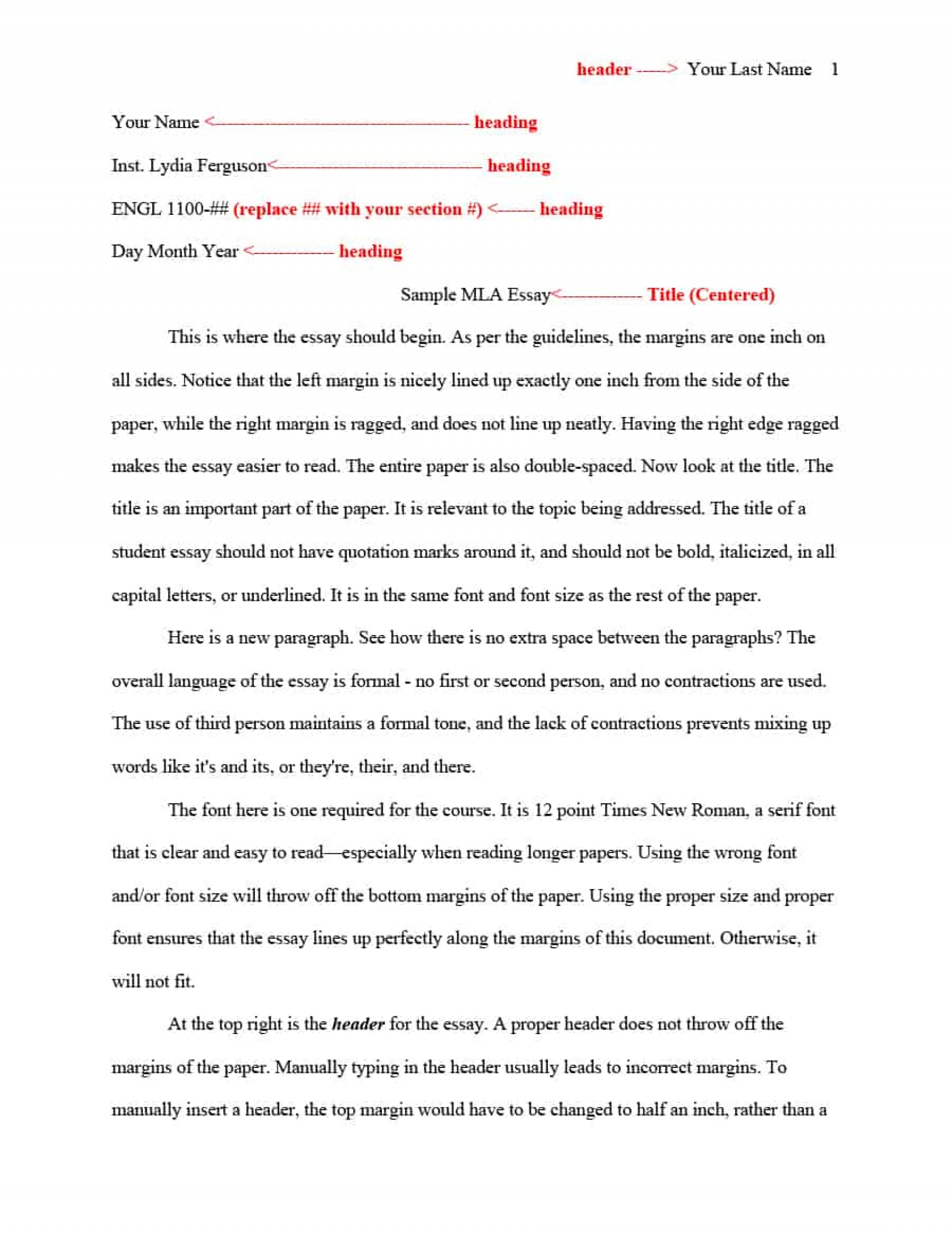016 Essay Template Mla Format Impressive Structure Example Pdf University Expository Middle School 1920
