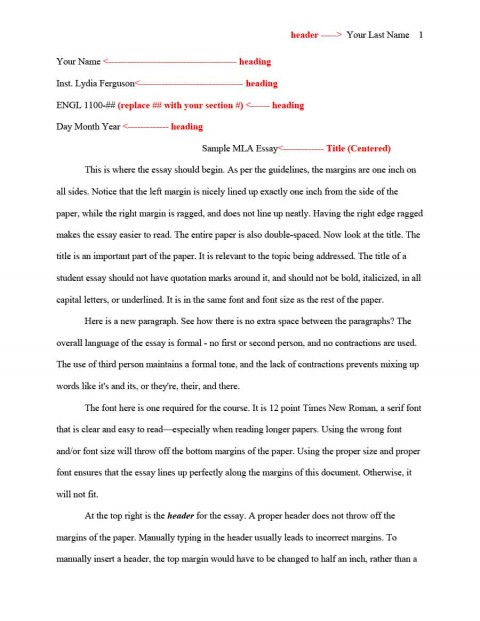 016 Essay Template Mla Format Impressive Structure Example Pdf University Expository Middle School 480