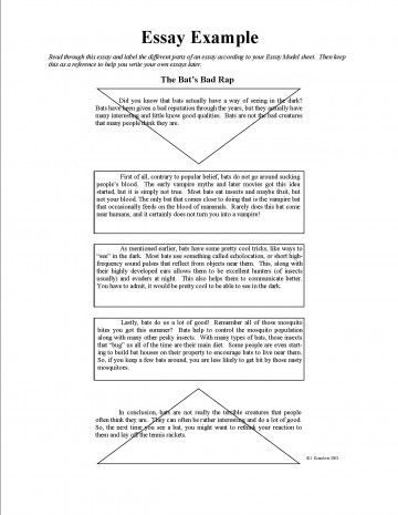 016 Example Essay Rare About Yourself For College Questions English 360