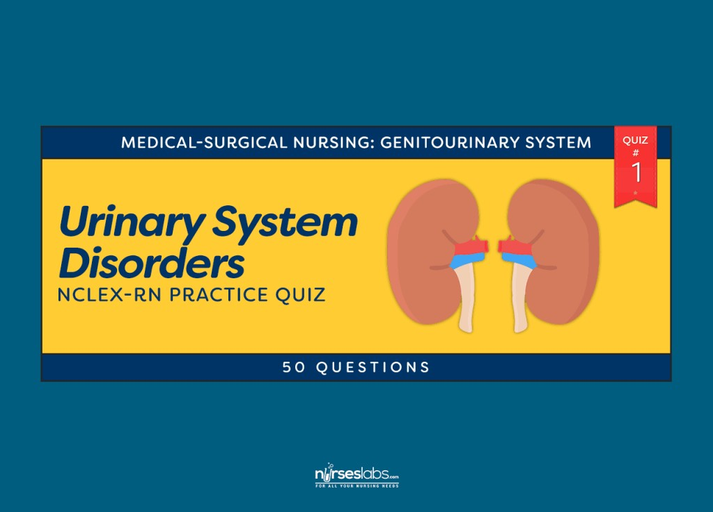 016 Ft Urinary System Disorders Practice Quiz Questions National Peace Essay Contest Marvelous 2019 Large