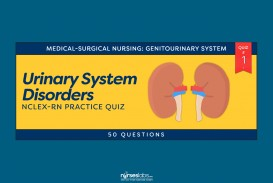 016 Ft Urinary System Disorders Practice Quiz Questions National Peace Essay Contest Marvelous 2019