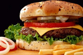 016 Opinion Essay About Fast Food French Fries Onions Hamburgers Unbelievable Restaurants Example Short