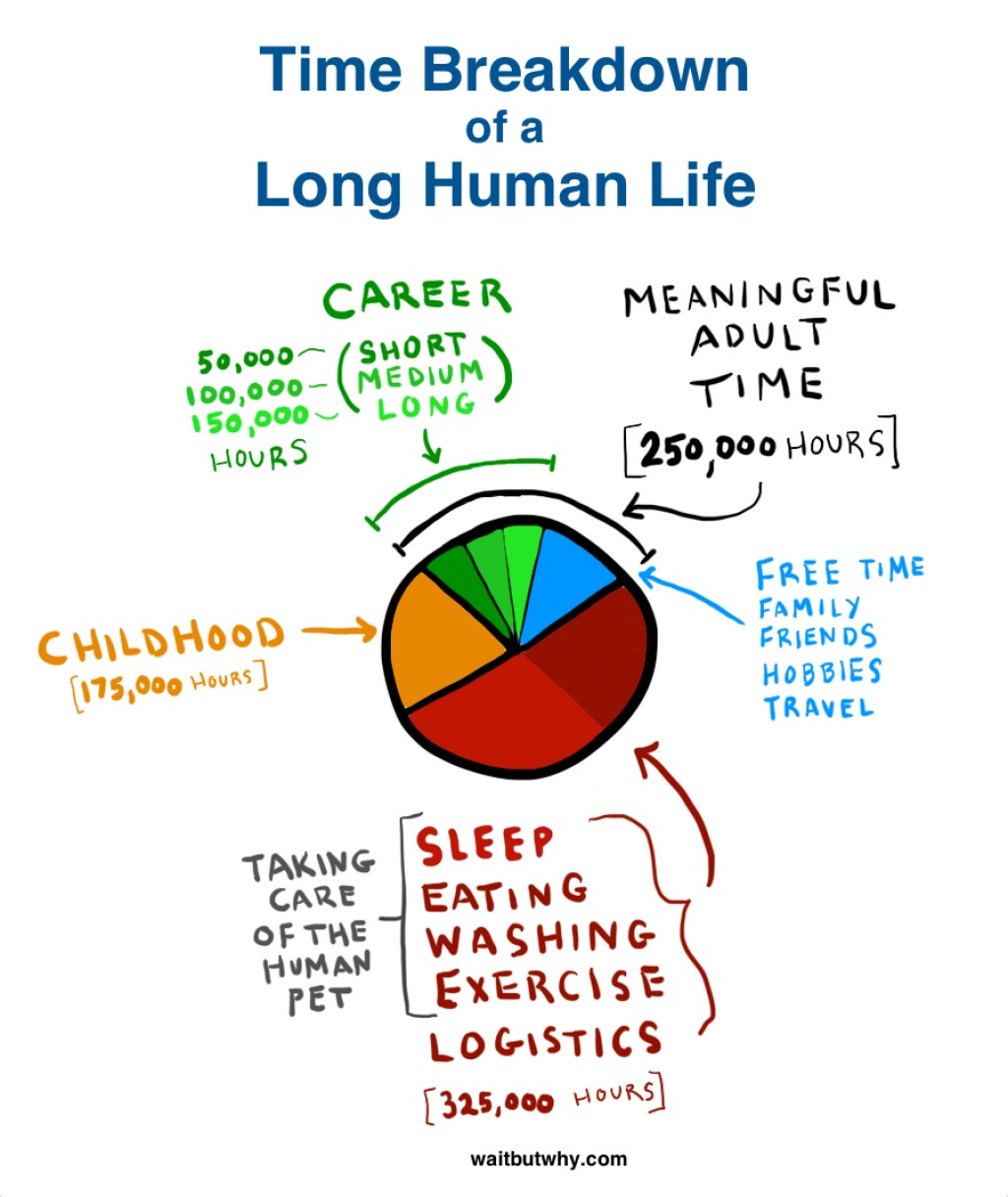 016 Pie Chart Why Career Is Important In Our Life Essay Frightening Large
