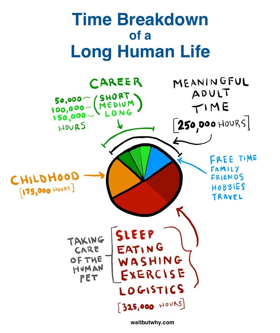 016 Pie Chart Why Career Is Important In Our Life Essay Frightening Full