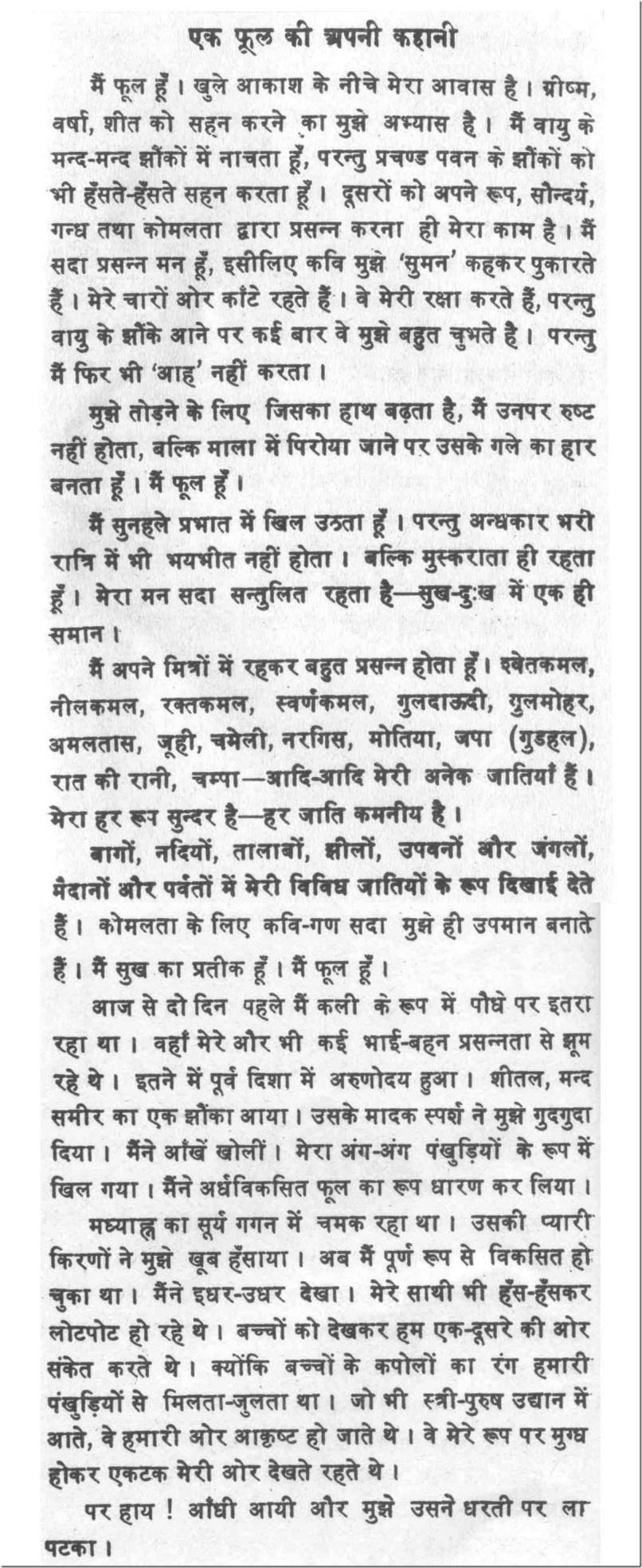 017 About Rose Flower Essay Example 100030 Thumbresize8062c1968 Unbelievable In Marathi Kannada Language Full