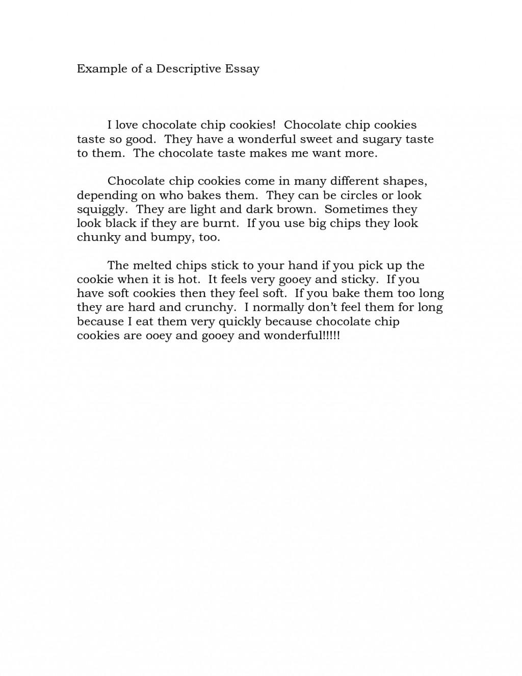 017 Descriptive Essay Outlines 705115 Outstanding Outline Template Pdf About A Person Large