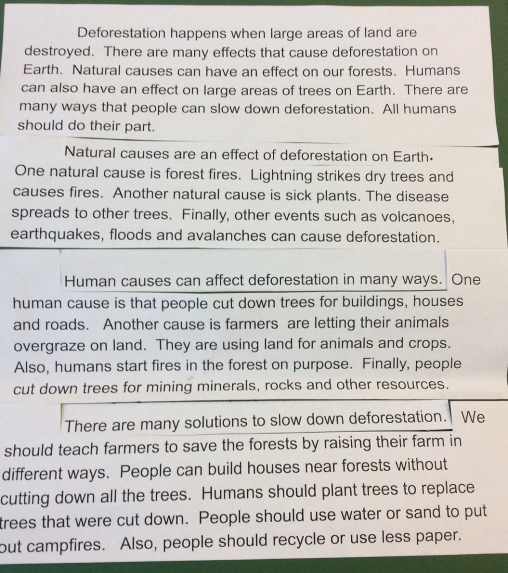 017 Dtwmvqevaaatseq Deforestation Essay Phenomenal Topics In Hindi Pdf Large