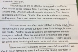 017 Dtwmvqevaaatseq Deforestation Essay Phenomenal Topics In Hindi Pdf