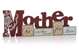 017 Essay Example About Admire My Phenomenal Mother