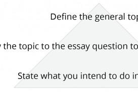 017 Essay Example Figure Intros Introduction Stupendous Paragraph Literary Argumentative Sample