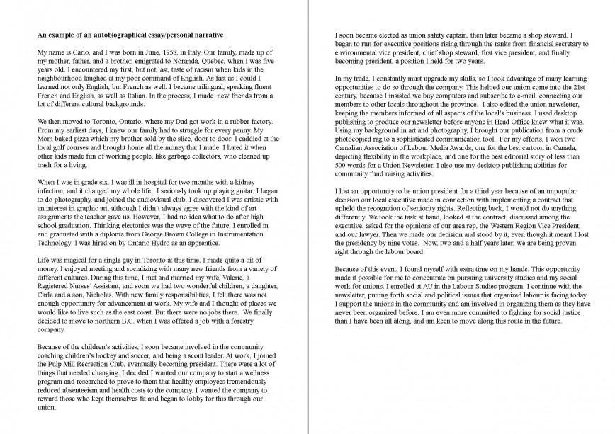 017 Essay Example Memoir Wonderful Literacy Examples Narrative Food