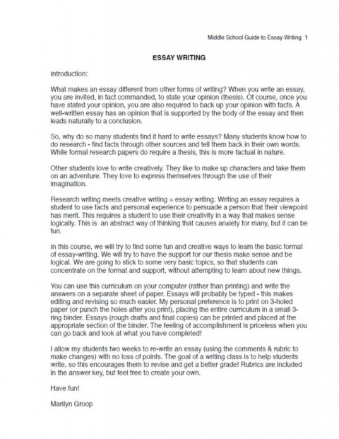 017 Essay Example Ms Excerpt 791x1024 Fast Stunning Food Nation Outline Titles Introduction 480