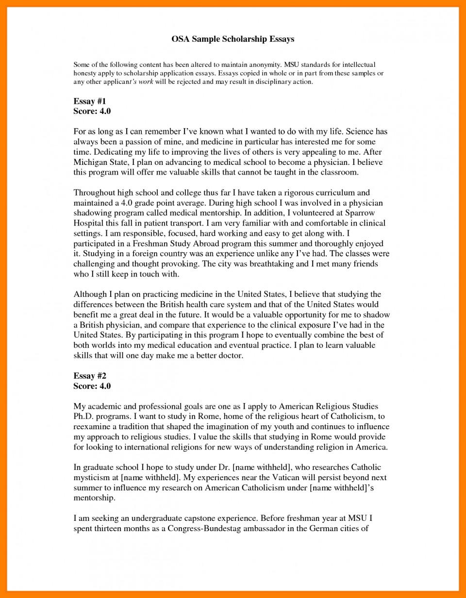 Motivation Essay   rheingau.com