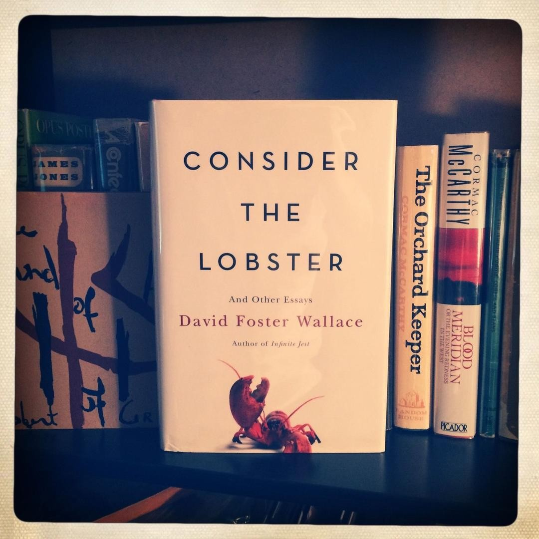 018 David Foster Wallace Signed Consider 1 6f8915f8f9d063b400975e211b89ef27 Essays Essay Formidable Amazon And The Long Thing New On Novels Cruise Ship Full