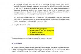 018 Essay Example Introduction Paragraph Intro Devlp Concl Phpapp02 Thumbnail Stupendous Literary Argumentative Sample