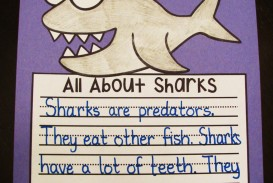 018 Essay Example Shark Wonderful Essayshark Sign Up Topics Questions