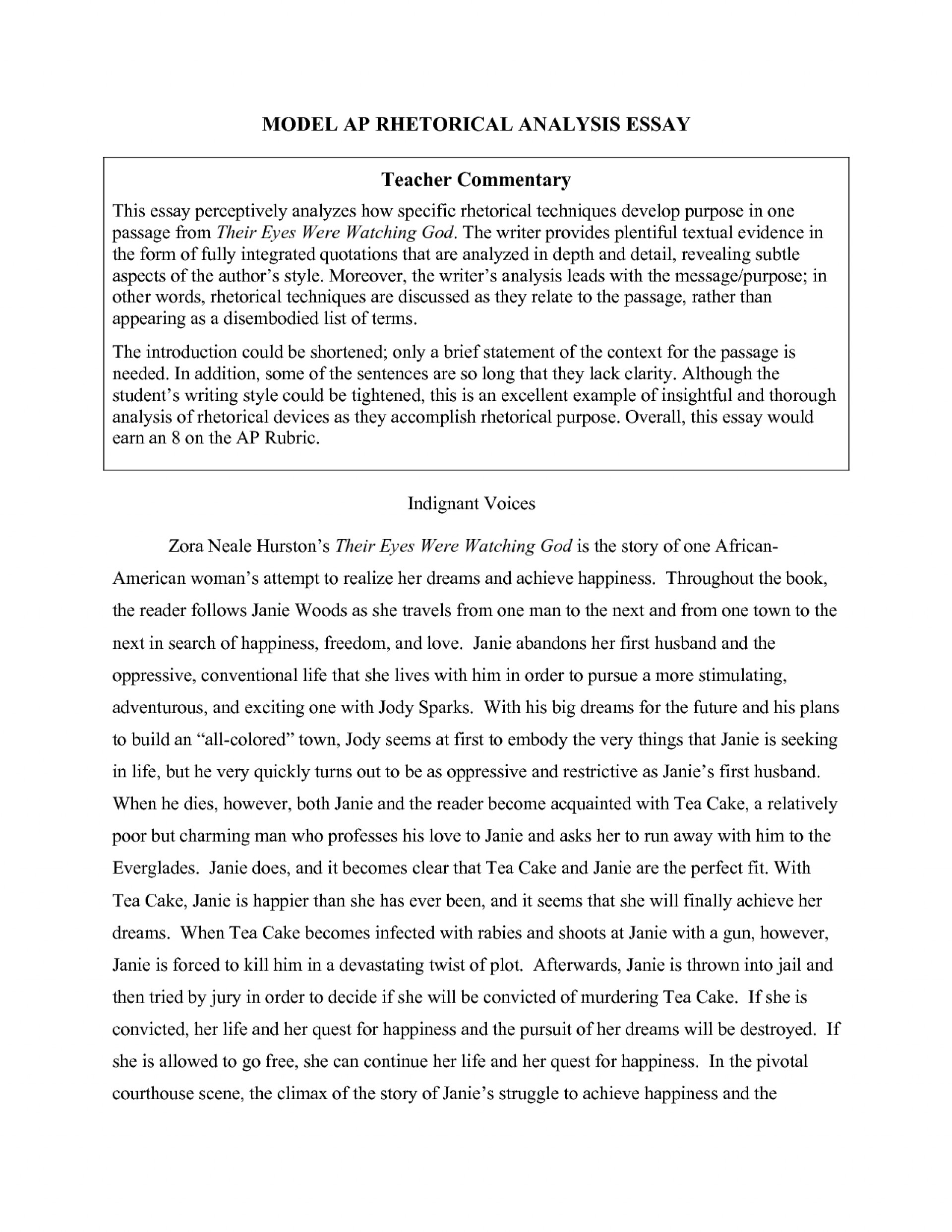 018 Essay Example Visual Examples Top Argument Analysis Reflection Arts 1920