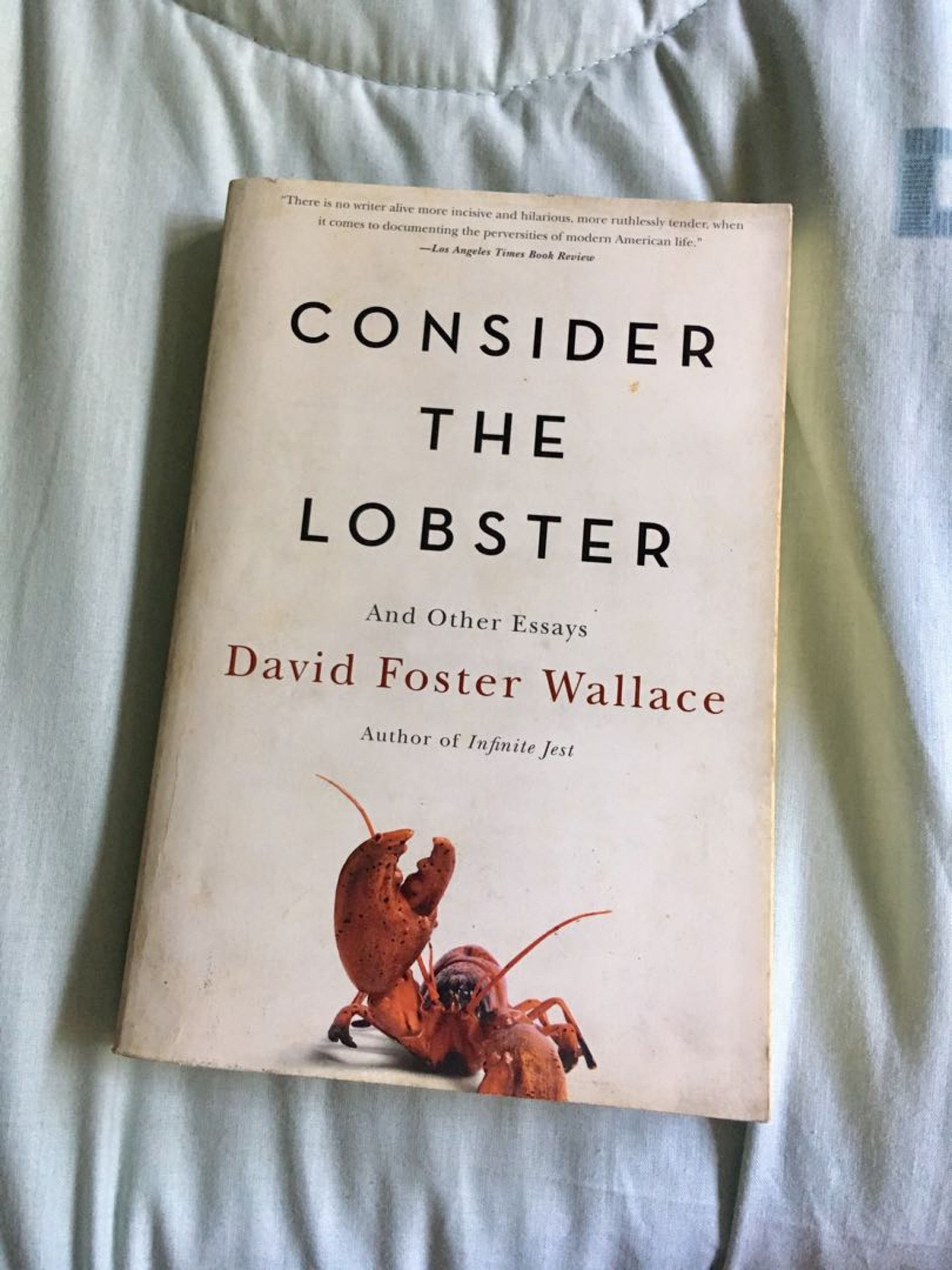 019 Consider The Lobster Essay Example By David Foster Wallace 1522206669 D4e499d5 Exceptional Rhetorical Analysis And Other Essays Summary 1920