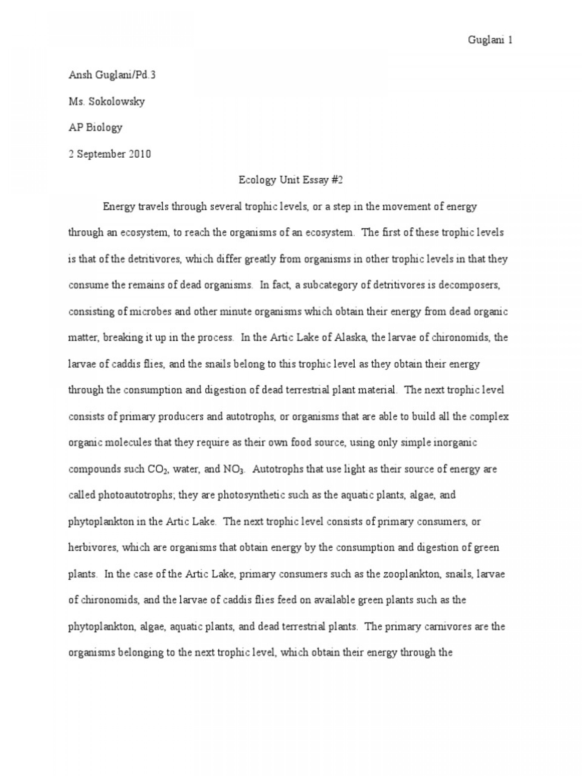 019 Essay Example On Water Unique Properties Of Is Life Pdf Soil And Conservation Examples Unbelievable Writing Bottle For Class 5 Cycle In English 1920