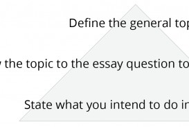 019 Essay Example Opening Sentences For Essays Figure Intro Paragraphs Unique Good Closing Examples Great Introductory Ielts