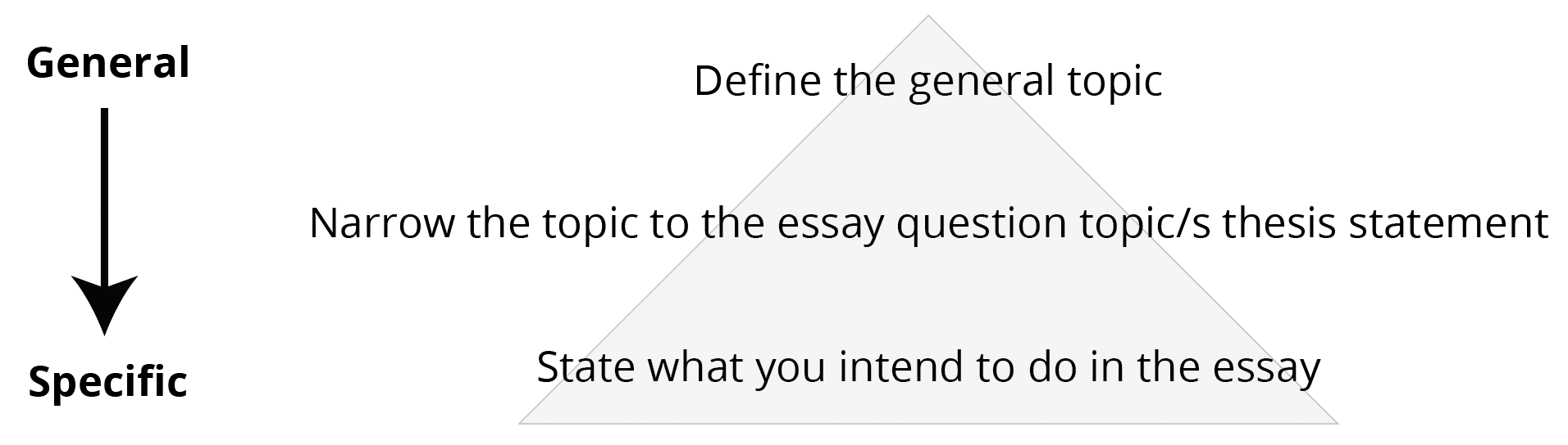 019 Essay Example Opening Sentences For Essays Figure Intro Paragraphs Unique Examples Of Good College Starting Full