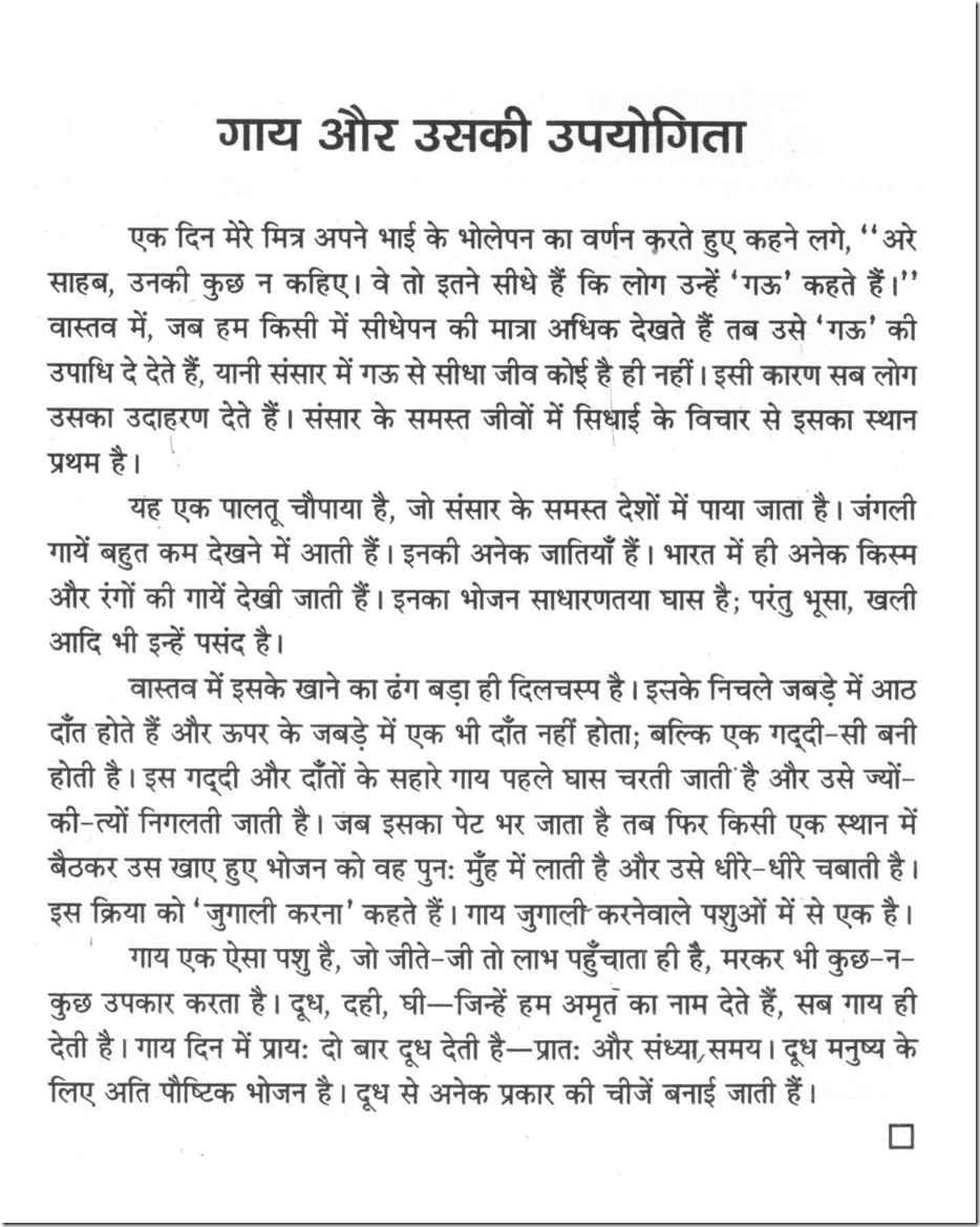 My Cow Essay In Hindi - All About Cow Photos