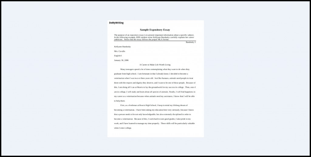 019 Expository Essay Samples Impressive Theme Examples High School For 7th Grade Large