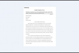 019 Expository Essay Samples Impressive Theme Examples High School For 7th Grade