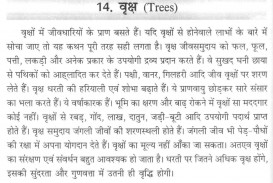 019 Friends Essay 3385844636 Trees Are Our In Odia Marvelous For Class 2 Introduction My Best Friend Hindi
