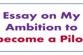 019 Maxresdefault Essay Example My Amazing School Dream For Class 10 In Urdu 1 3 Marathi