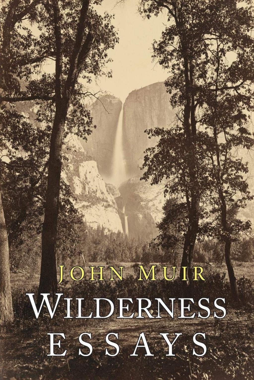 020 81lwnkjqhrl Essay Example John Muir Wilderness Best Essays Pdf Review Large