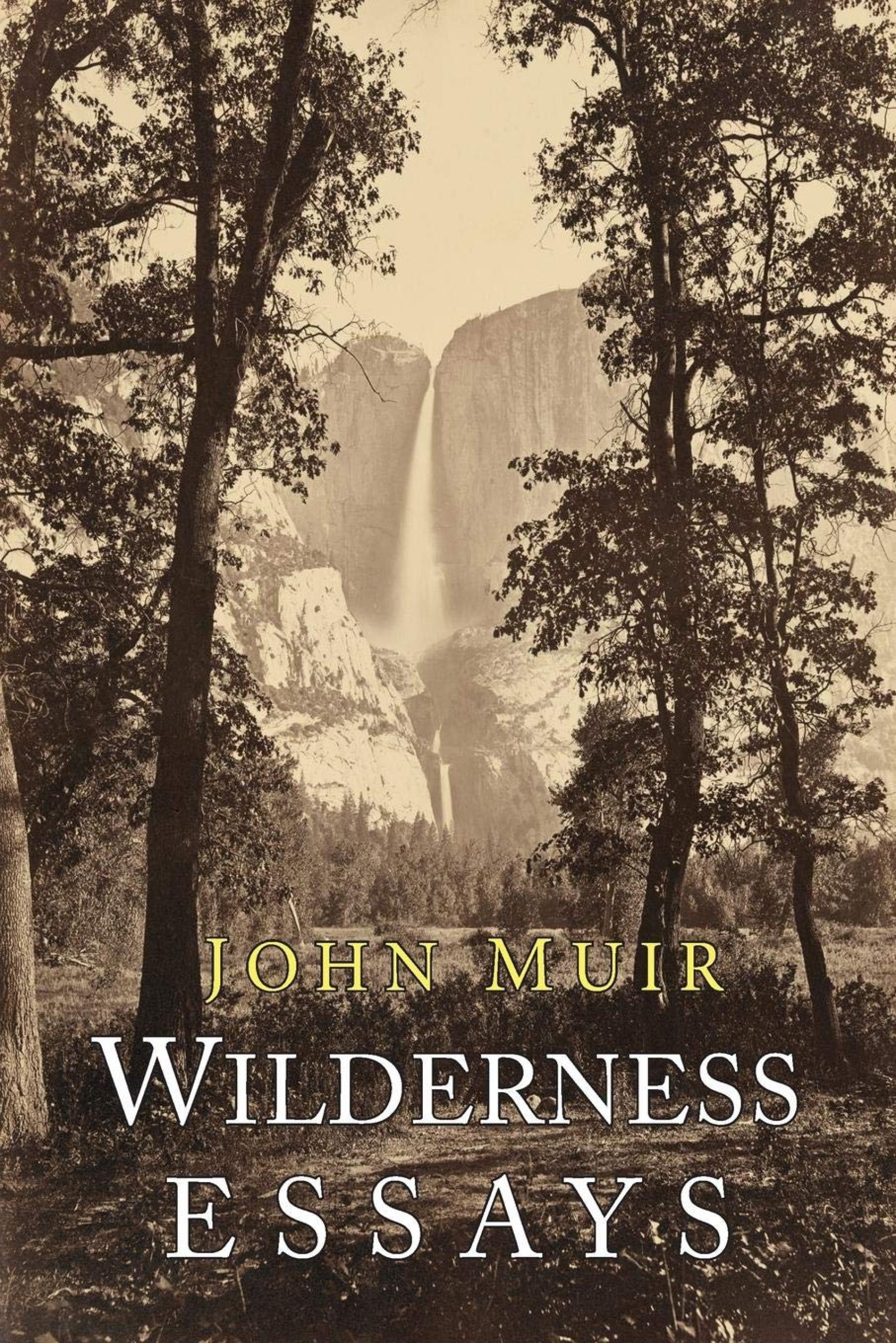 020 81lwnkjqhrl Essay Example John Muir Wilderness Best Essays Pdf Review 1920