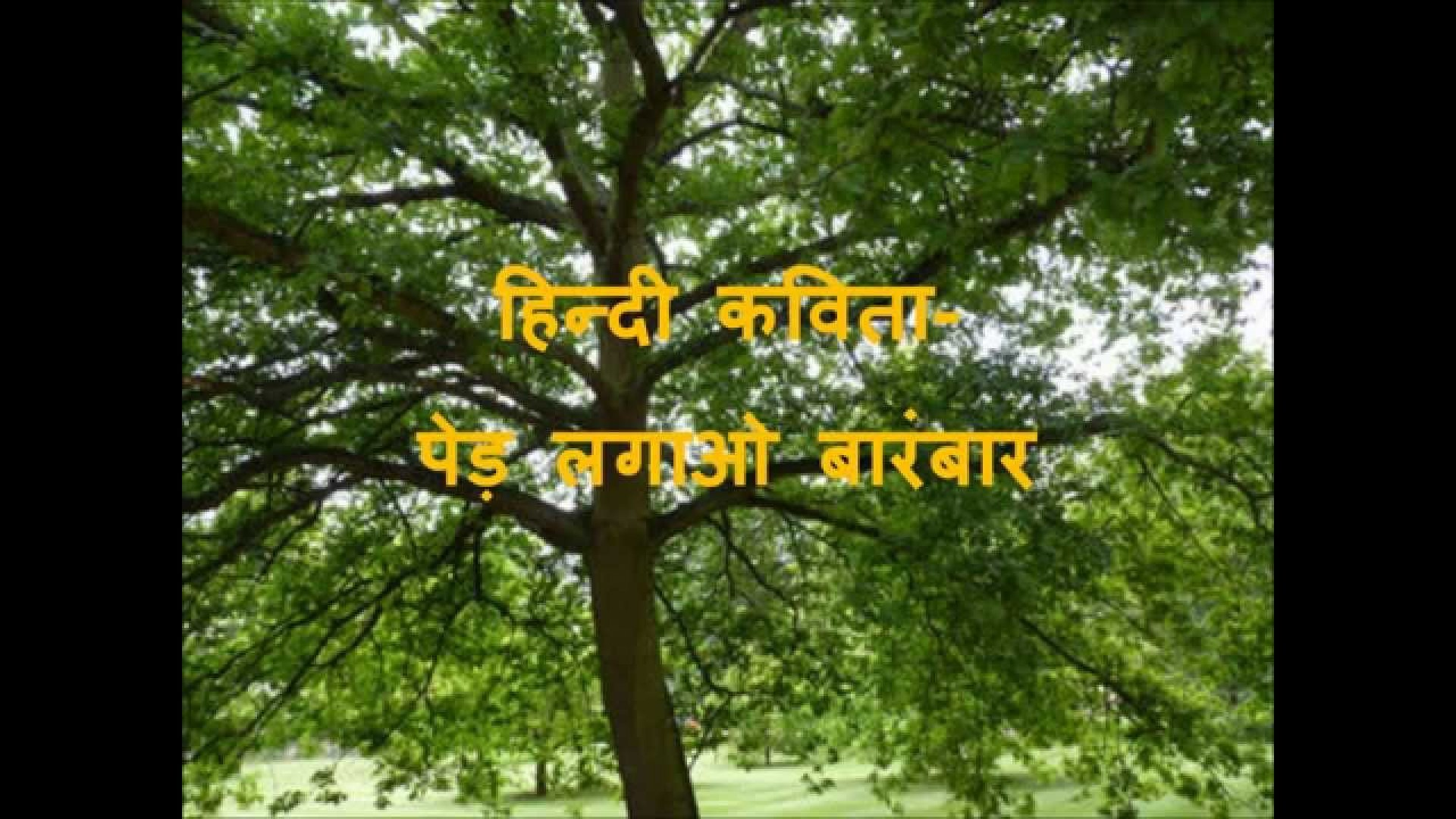 020 How Can We Save Trees Essay Example Marvelous To In Hindi Telugu 1920