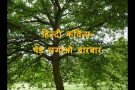 020 How Can We Save Trees Essay Example Marvelous To In Hindi Telugu