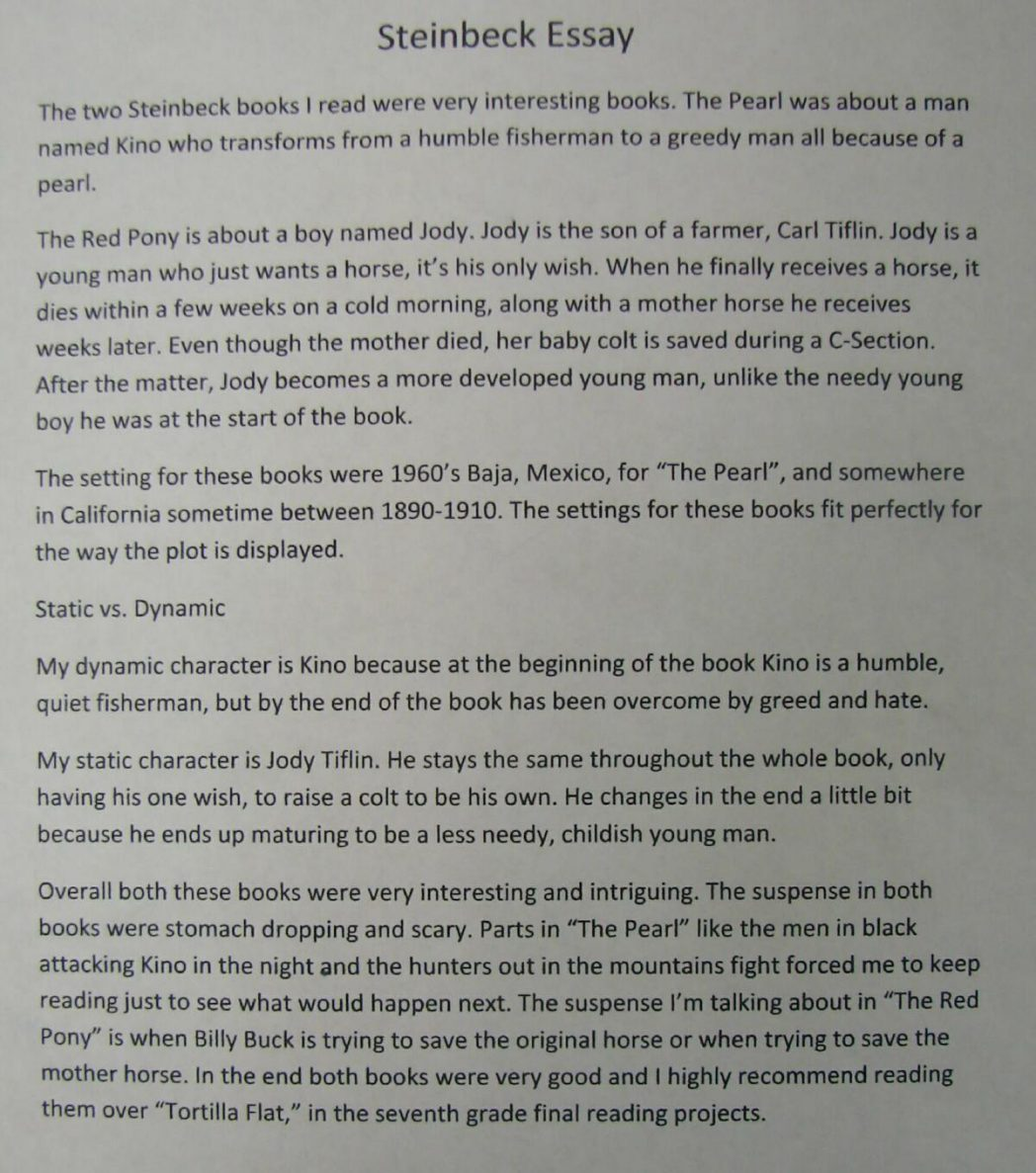 essay on books are our best friends for class 8