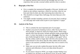 021 Essay Example How To Quote Poem In An 008053125 1 Best A Lines From Mla Chicago Style